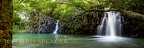 Twin falls road to hana